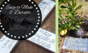 Easy to make plant labels DIY